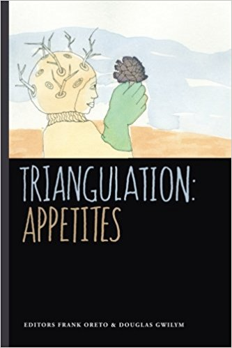 Triangulation book cover image